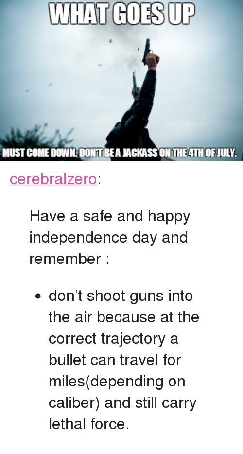 "Guns, Independence Day, and Tumblr: WHAT GOES UP  MUST COME DOWNDONT BEA JACKASS ON THE4TH OFJULY <p><a href=""http://cerebralzero.tumblr.com/post/90569795397/have-a-safe-and-happy-independence-day-and"" class=""tumblr_blog"">cerebralzero</a>:</p><blockquote> <p>Have a safe and happy independence day and remember :</p> <ul><li>don't shoot guns into the air because at the correct trajectory a bullet can travel for miles(depending on caliber) and still carry lethal force.</li> </ul></blockquote>"