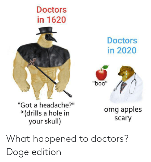 doctors: What happened to doctors? Doge edition