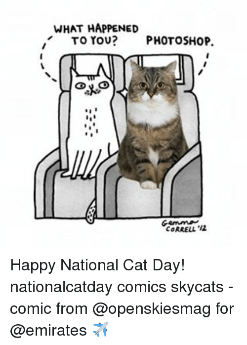 Happy National Cat Day: WHAT HAPPENED  TO YOU?  PHOTOSHOP  CORRELL, '12 Happy National Cat Day! nationalcatday comics skycats - comic from @openskiesmag for @emirates ✈️