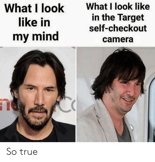Target, True, and Camera: What I look like  in the Target  self-checkout  What I look  like in  my mind  camera So true