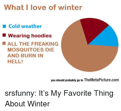 burn in hell: What I love of winter  Cold weather  Wearing hoodies  ALL THE FREAKING  MOSQUITOES DIE  AND BURN IN  HELL!  you should probably go to TheMetaPicture.com srsfunny:  It's My Favorite Thing About Winter
