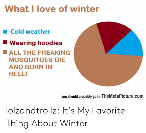 burn in hell: What I love of winter  Cold weather  Wearing hoodies  ALL THE FREAKING  MOSQUITOES DIE  AND BURN IN  HELL!  you should probably go to TheMetaPicture.com lolzandtrollz:  It's My Favorite Thing About Winter
