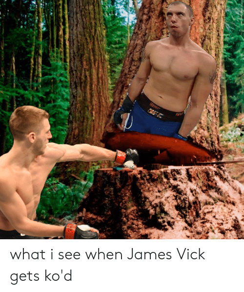 James, What, and Vick: what i see when James Vick gets ko'd