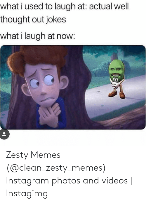 Instagimg: what i used to laugh at: actual well  thought out jokes  what i laugh at now:  E Zesty Memes (@clean_zesty_memes) Instagram photos and videos | Instagimg