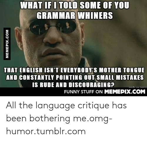 What If I Told: WHAT IF I TOLD SOME OF YOU  GRAMMAR WHINERS  THAT ENGLISH ISN'T EVERYBODY'S MOTHER TONGUE  AND CONSTANTLY POINTING OUT SMALL MISTAKES  IS RUDE AND DISCOURAGING?  FUNNY STUFF ON MEMEPIX.COM  MEMEPIX.COM All the language critique has been bothering me.omg-humor.tumblr.com