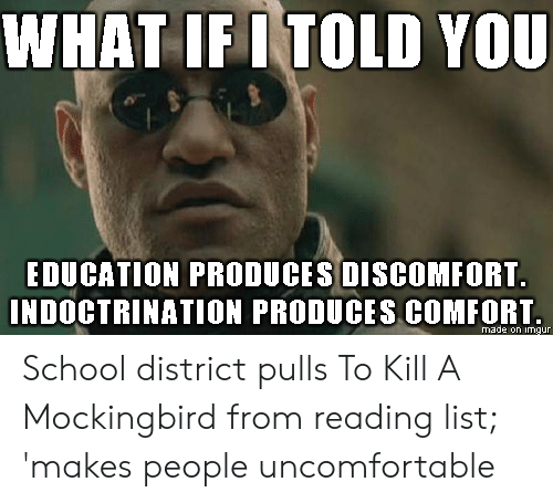 School, To Kill a Mockingbird, and Imgur: WHAT IF I TOLD YOU  EDUCATION PRODUCES DISCOMFORT.  INDOCTRINATION PRODUCES COMFORT.  made on imgur School district pulls To Kill A Mockingbird from reading list; 'makes people uncomfortable