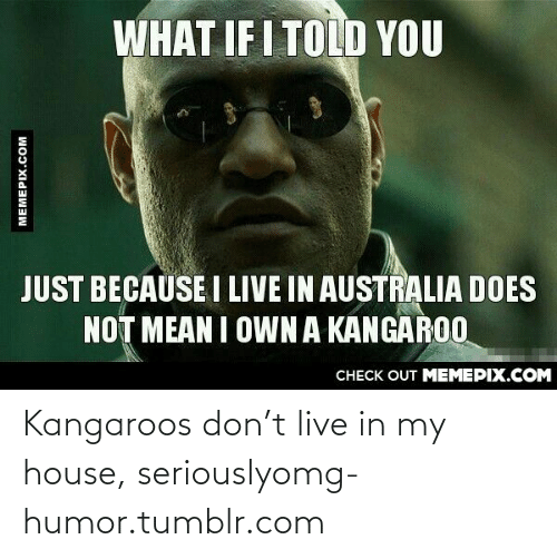 What If I Told: WHAT IF I TOLD YOU  JUST BECAUSE I LIVE IN AUSTRALIA DOES  NOT MEAN I OWN A KANGAROO  CHECK OUT MEMEPIX.COM  MEMEPIX.COM Kangaroos don't live in my house, seriouslyomg-humor.tumblr.com