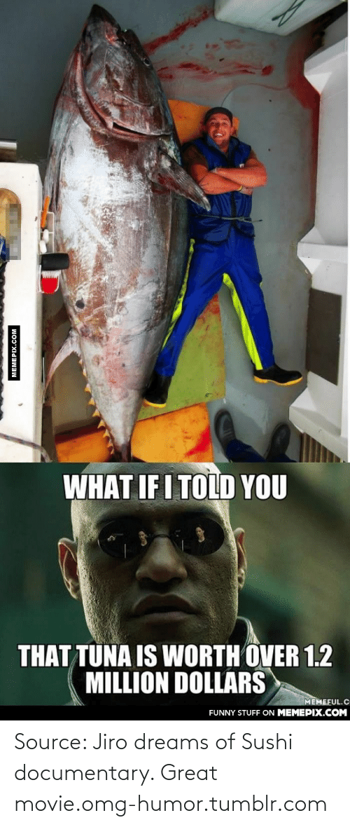 What If I Told: WHAT IF I TOLD YOU  THAT TUNA IS WORTH OVER 1.2  MILLION DOLLARS  MEMEFUL.C  FUNNY STUFF ON MEMEPIX.COM  MEMEPIX.COM Source: Jiro dreams of Sushi documentary. Great movie.omg-humor.tumblr.com