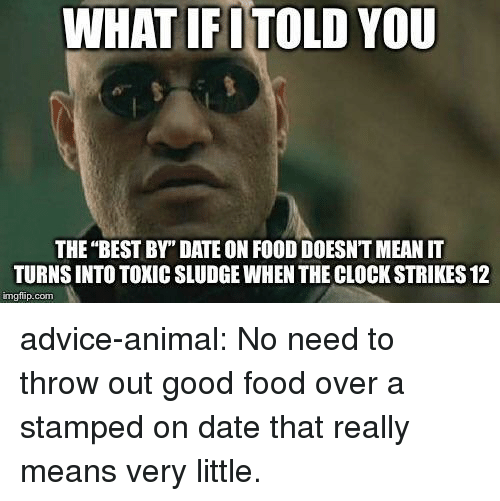 "You The Best: WHAT IFITOLD YOU  THE ""BEST BY"" DATE ON FOOD DOESNT MEAN IT  TURNS INTO TOXIC SLUDGE WHEN THE CLOCK STRIKES 12  imgfip.com advice-animal:  No need to throw out good food over a stamped on date that really means very little."