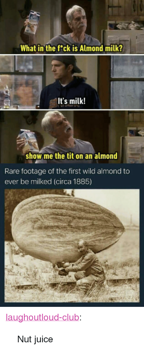 "Club, Juice, and Tumblr: What in the fck is Almond milk?  It's milk!  show me the tit on an almond  Rare footage of the first wild almond to  ever be milked (circa 1885) <p><a href=""http://laughoutloud-club.tumblr.com/post/163921272813/nut-juice"" class=""tumblr_blog"">laughoutloud-club</a>:</p>  <blockquote><p>Nut juice</p></blockquote>"