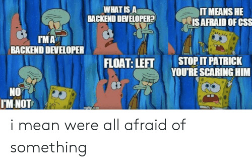 what is a: WHAT IS A  BACKEND DEVELOPER?  IT MEANS HE  IS AFRAID OF CSS  IMA  BACKEND DEVELOPER  STOP IT PATRICK  YOU'RE SCARING HIM  FLOAT: LEFT  NO  IM NOT  mg lip.com i mean were all afraid of something