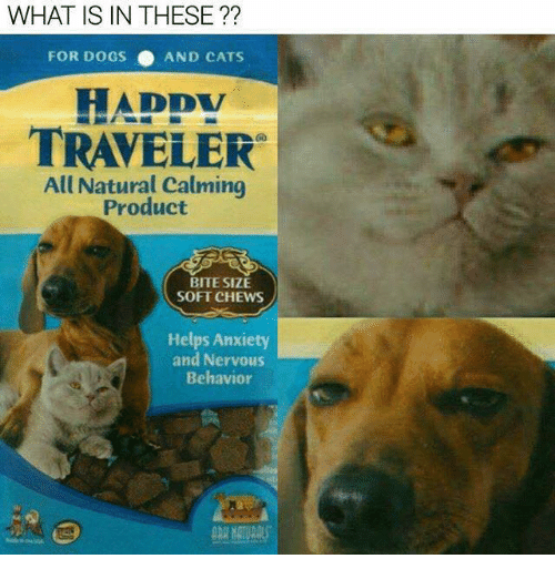 dog-and-cats: WHAT IS IN THESE  FOR DOGS AND CATS  DDV  TRAVELER  All Natural calming  Product  BITE SIZE  SOFT CHEWS  Helps Anxiety  and Nervous  Behavior