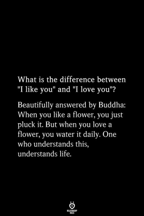 """Buddha: What is the difference between  """"I like you"""" and """"I love you""""?  Beautifully answered by Buddha:  When you like a flower, you just  pluck it. But when you love a  flower, you water it daily. One  who understands this,  understands life.  RELATIONSHIP  ES"""