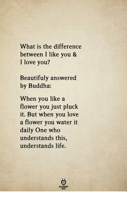 Life, Love, and I Love You: What is the difference  between I like you &  I love you?  Beautifuly answered  by Buddha:  When you like a  flower you just pluck  it. But when you love  a flower you water it  daily One who  understands this,  understands life.