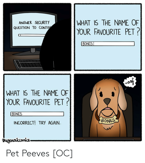 Bones, What Is, and Answer: WHAT IS THE NAME OF  ANSWER SECURITY  QUESTION TO CONTIN  YOUR FAVOURITE PET?|  BONES  soof  WHAT IS THE NAME OF  YOUR FAVOURITE PET?  BONES  BONESS  INCORRECT! TRY AGAIN  W  thegenctcomics Pet Peeves [OC]