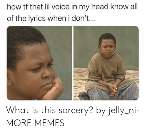 what is this: What is this sorcery? by jelly_ni- MORE MEMES