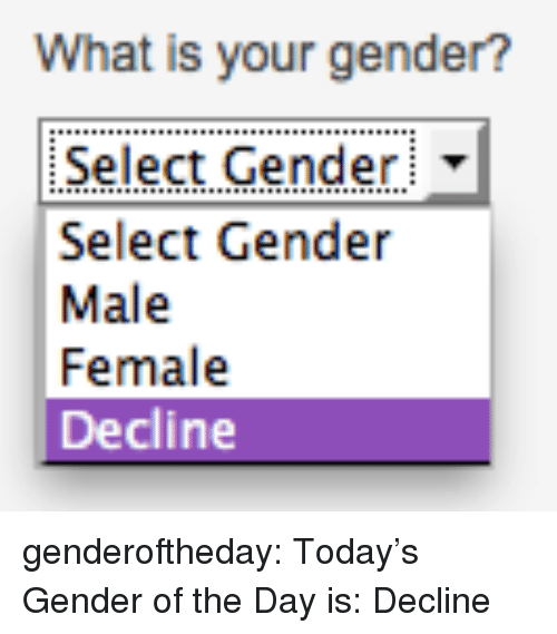 Tumblr, Blog, and Http: What is your gender?  Select Gender  Select Gender  Male  Female  Decline genderoftheday: Today's Gender of the Day is: Decline