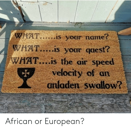 What Is, Air, and Speed: WHAT,..is your name?  WHAT.....is your qaest?  WHAT....is the air speed  velocity of an  anladen swallow? African or European?