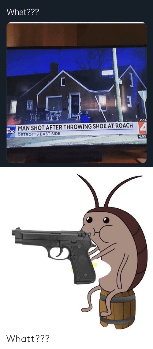 Shoe, Man, and Roach: What???  LOCA  MAN SHOT AFTER THROWING SHOE AT ROACH  DETROIT'S EAST SIDE  4:03  0 Whatt???