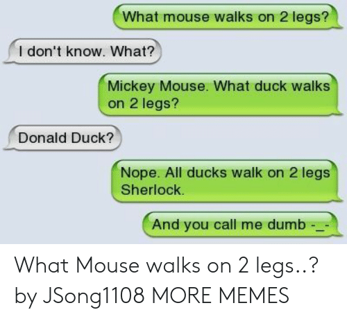 Dank, Dumb, and Memes: What mouse walks on 2 legs?  l don't know. What?  Mickey Mouse. What duck walks  on 2 legs?  Donald Duck?  Nope. All ducks walk on 2 legs  Sherlock.  And you call me dumb What Mouse walks on 2 legs..? by JSong1108 MORE MEMES
