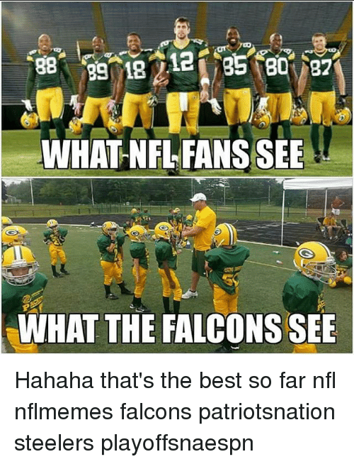 Memes, Falcons, and Steelers: WHAT NFL FANS SEE  WHAT THE FALCONS SEE Hahaha that's the best so far nfl nflmemes falcons patriotsnation steelers playoffsnaespn