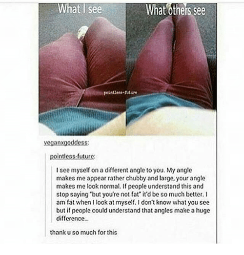 """Youre Not Fat: What see  What others See  future  yeganxgoddess;  pointless future:  I see myself on a different angle to you. My angle  makes me appear rather chubby and large, your angle  makes me look normal. If people understand this and  stop saying """"but you're not fat it'd be so much better. I  am fat when I look at myself.Idon't know what you see  but if people could understand that angles make a huge  difference  thank u so much for this"""