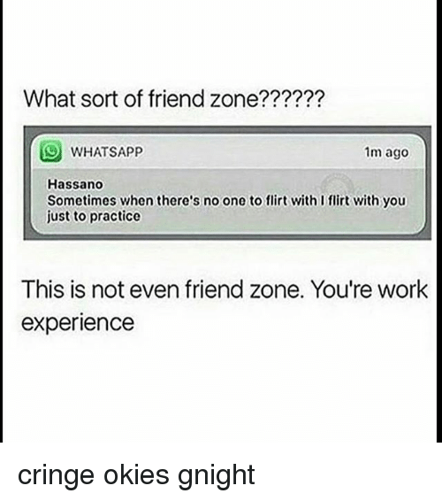 Friend Zoning: What sort of friend zone??????  WHATSAPP  1m ago  Hassano  Sometimes when there's no one to flirt with I flirt with you  just to practice  This is not even friend zone. You're work  experience cringe okies gnight