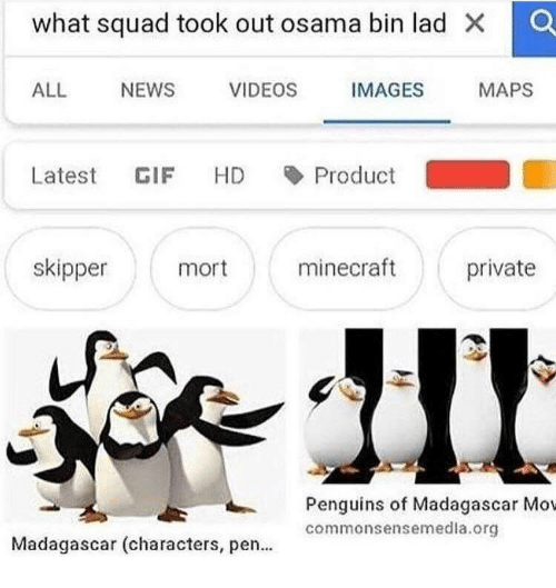 madagascar: what squad took out osama bin lad X O  ALL NEWS VIDEOS IMAGES  MAPS  Latest GIF HD Product  skipper  mort  minecraft  private  Penguins of Madagascar Mov  commonsensemedla.org  Madagascar (characters, pen...