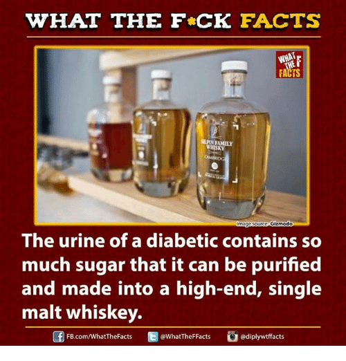 Urin: WHAT THE FCK FACTS  FACTS  FAMILY  WHISKY  mage  Source Gizmodo  The urine of a diabetic contains so  much sugar that it can be purified  and made into a high-end, single  malt whiskey.  Ed FB.com/WhatThe Facts  @WhatTheFFacts