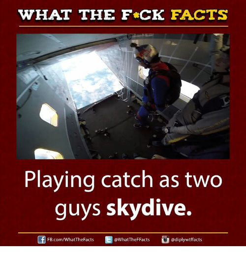 skydive: WHAT THE FCK FACTS  Playing catch as two  guys skydive.  Cui adiplywtffacts  FB.com/WhatTheFacts  @WhatTheFFacts,