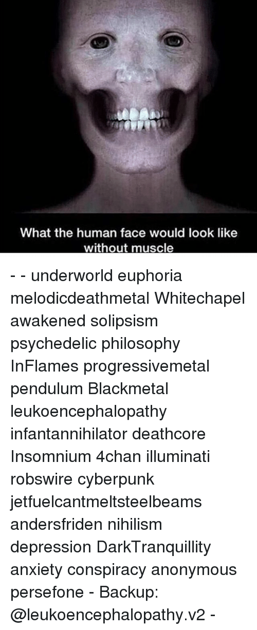 anonymouse: What the human face would look like  without muscle - - underworld euphoria melodicdeathmetal Whitechapel awakened solipsism psychedelic philosophy InFlames progressivemetal pendulum Blackmetal leukoencephalopathy infantannihilator deathcore Insomnium 4chan illuminati robswire cyberpunk jetfuelcantmeltsteelbeams andersfriden nihilism depression DarkTranquillity anxiety conspiracy anonymous persefone - Backup: @leukoencephalopathy.v2 -