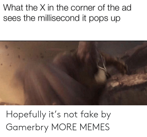 Dank, Fake, and Memes: What the X in the corner of the ad  sees the millisecond it pops up Hopefully it's not fake by Gamerbry MORE MEMES