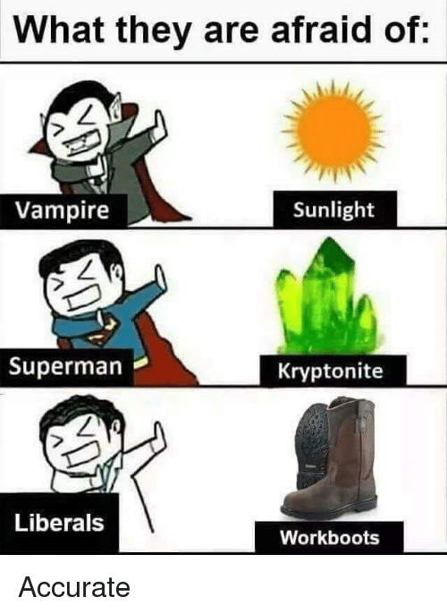 Superman, Vampire, and Kryptonite: What they are afraid of:  Vampire  Sunlight  Superman  Kryptonite  Liberals  Workboots