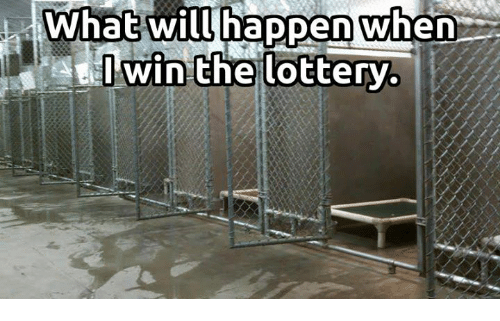 Lottery, Memes, and 🤖: What will happen when  win the lottery.