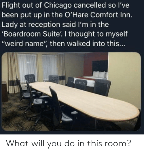 You Do: What will you do in this room?