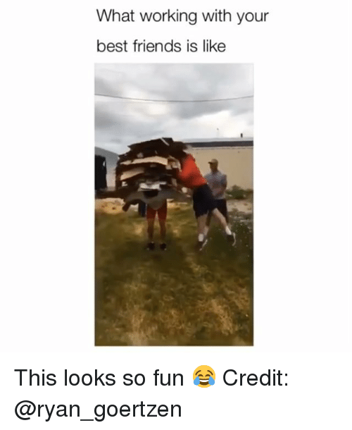 Friends, Memes, and Best: What working with your  best friends is like This looks so fun 😂 Credit: @ryan_goertzen