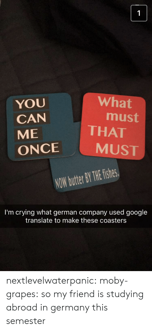 Fishes: What  YOU  CAN  ME  ONCE  must  THAT  MUST  NOW butter BY THE fishes  I'm crying what german company used google  translate to make these coasters nextlevelwaterpanic:  moby-grapes: so my friend is studying abroad in germany this semester