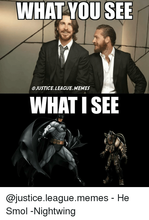 Memes, 🤖, and Nightwing: WHAT YOU SEE  OJUSTICE LEAGUE, MEMES  WHAT ISEE @justice.league.memes - He Smol -Nightwing
