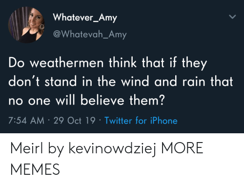 amy: Whatever_Amy  @Whatevah_Amy  Do weathermen think that if they  don't stand in the wind and rain that  no one will believe them?  7:54 AM 29 Oct 19 Twitter for iPhone Meirl by kevinowdziej MORE MEMES