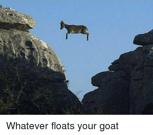 Memes, 🤖, and Goats: Whatever floats your goat