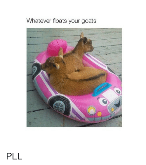 Goat, Girl Memes, and Pll: Whatever floats your goats PLL