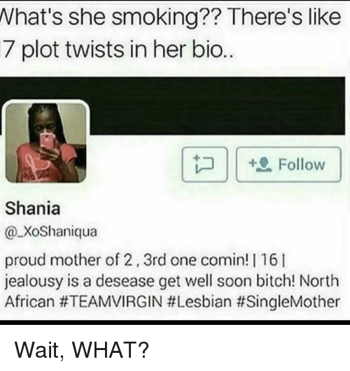 Bitch, Blackpeopletwitter, and Funny: What's she smoking?? There's like  7 plot twists in her bio..  Follow  Shania  @XoShaniqua  proud mother of 2,3rd one comin! | 16 I  jealousy is a desease get well soon bitch! North  African
