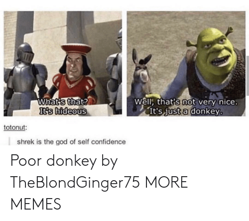 Well Thats: Whats that?  It's hideous  Well, that's not very nice.  It's just a donkey  totonut:  shrek is the god of self confidence Poor donkey by TheBlondGinger75 MORE MEMES