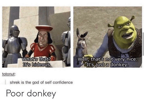 Well Thats: Whats that?  It's hideous  Well, that's not very nice.  It's just a donkey  totonut:  shrek is the god of self confidence Poor donkey
