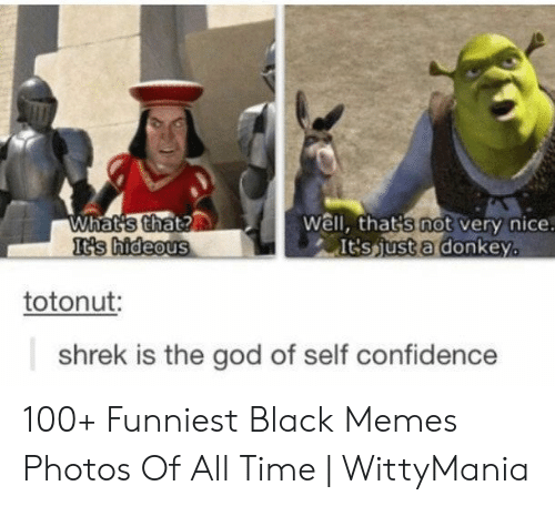 Well Thats: What's that?  It's hideous  Well, that's not very nice.  It'sjust a donkey.  totonut:  shrek is the god of self confidence 100+ Funniest Black Memes Photos Of All Time | WittyMania