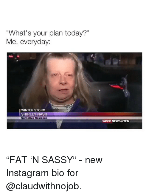 "Instagram, News, and Winter: ""What's your plan today?""  Me, everyday:  WINTER STORM  SHIRLEY NASH  Cornelius Resident  WCCB NEWS@TEN ""FAT 'N SASSY"" - new Instagram bio for @claudwithnojob."