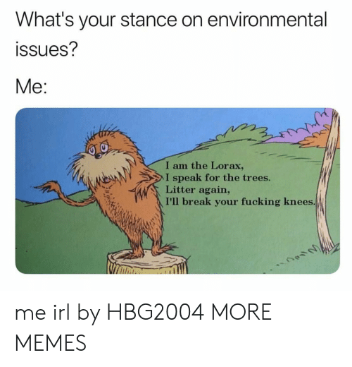 Dank, Fucking, and Memes: What's your stance on environmental  ssues?  Me:  I am the Lorax,  I speak for the trees.  Litter again,  I'll break your fucking knees me irl by HBG2004 MORE MEMES