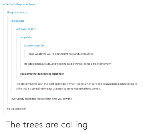 Freezing Cold: whatthehellhappenedtoyou:  the-place-where:  ikesdinos:  jackmymeat420:  corginator  jackmymeat420  drop whatever you're doing right now and climb a tree  its pitch black outside, and freezing cold. I think ill climb a tree tomorrow  you climb that fuckin tree right now  I've literally never seen this post on my dash when it is not after dark and cold as balls. I'm beginning to  think this is a conspiracy to get us eaten by some nocturnal tree demon.  everybody put in the tags at what time you saw this  # 11:13pm The trees are calling