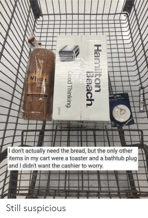 wheat: Wheat  veala  I don't actually need the bread, but the only other  items in my cart were a toaster and a bathtub plug  and I didn't want the cashier to worry.  VIA 9GAG.COM  Hamilton  Beach  Ccod Thinking  226142 Still suspicious