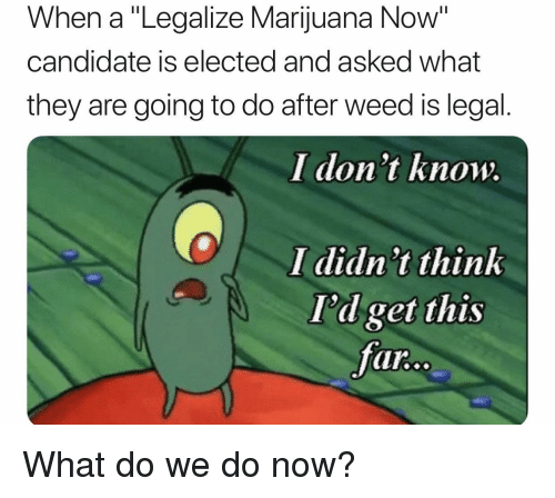 """Weed, Marijuana, and Think: When a """"Legalize Marijuana Now""""  candidate is elected and asked what  they are going to do after weed is legal.  I don't know.  I didn t think  I'd get this  far What do we do now?"""